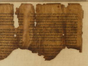What kinds of texts are found in the Dead Sea Scrolls?