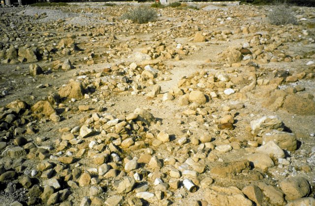 Cemetery at Qumran