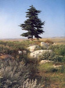 Neot Kedumim, the 550-acre Biblical Landscape Reserve in Israel.