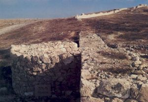 Semicircular tower and wall at Arad
