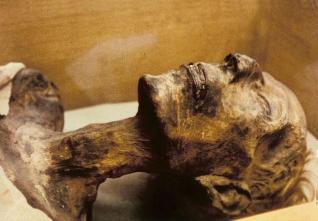 Mummy_Ramesses_II
