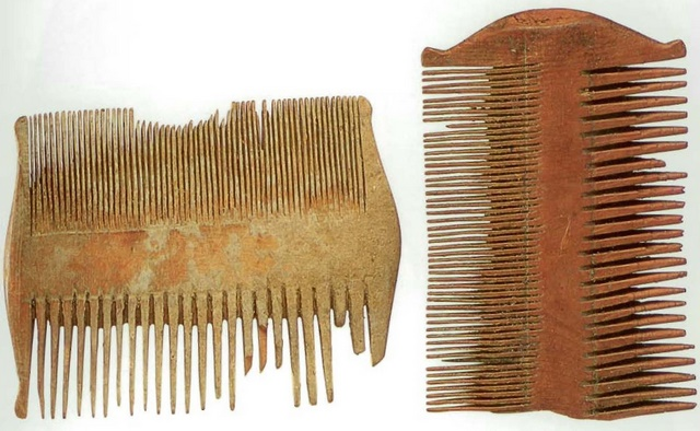 Wooden_Combs_from_Qumran