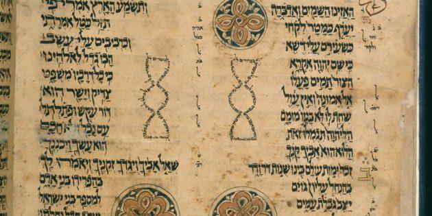 San'a Pentateuch, 1469