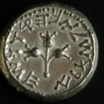 Rare Coin from Year 5 of the Revolt, 70 CE