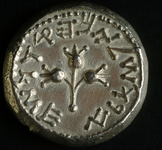 Rare_Coin_from_Year_5_of_the_Revolt_1 (1)