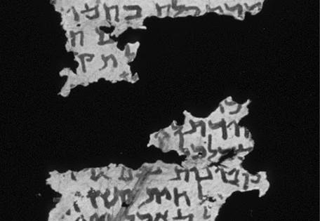 Dura Parchment