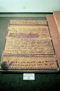5th Century CE Mosaic Floor Ein Gedi
