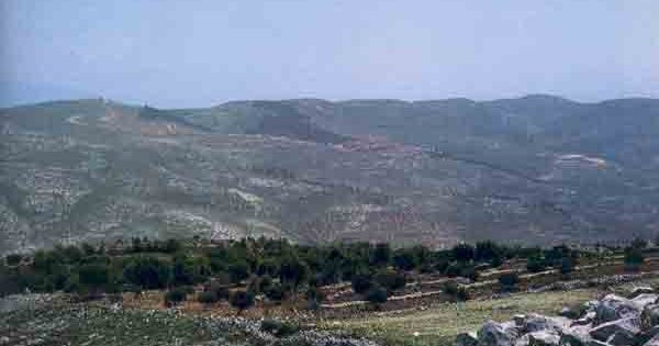 Has Joshua's Altar Been Found on Mt. Ebal? Adam Zertal, BAR 11:01, Jan/Feb 1985