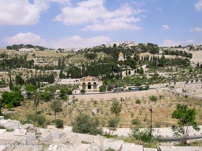 May 638 Caliph Umar (Omar)