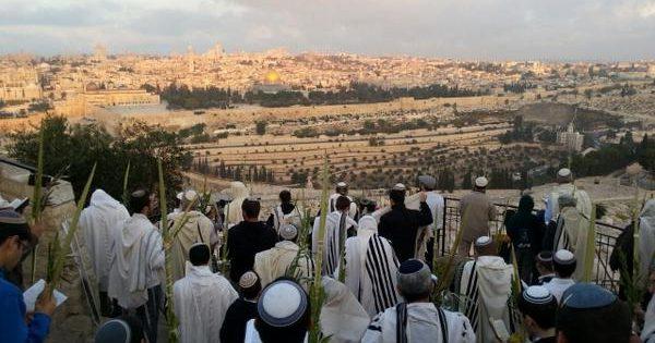 1039 Sukkot & Hoshanah Rabbah