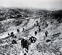 March 12, 1948 British Reveal non-Arab Volunteers in Palestine