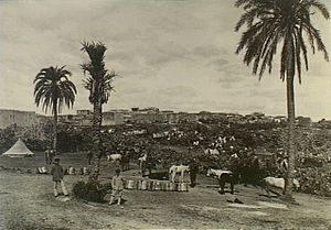 Tulkarm 1915