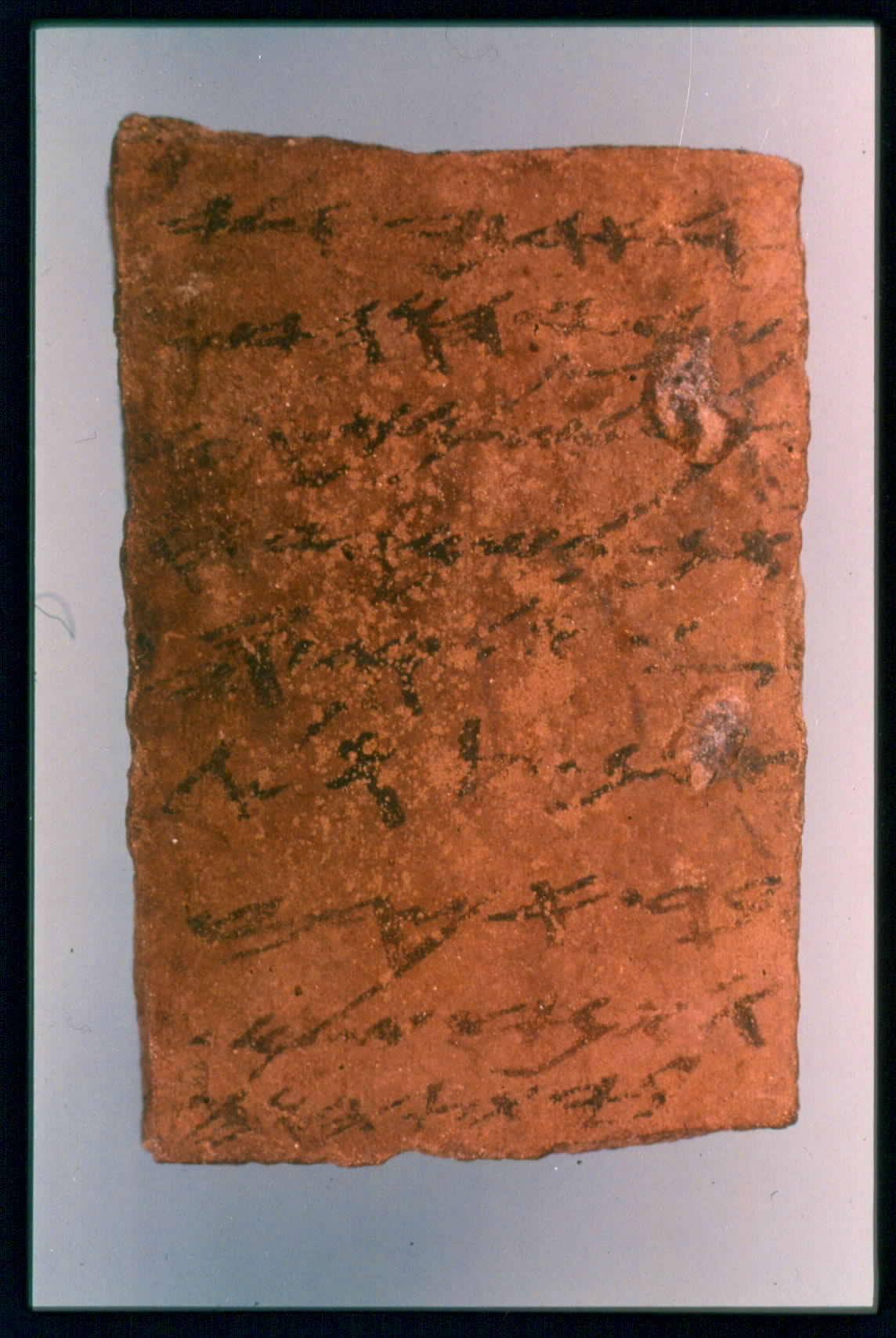 Arad Ostracon 1