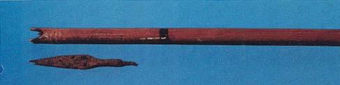 Arrow and Arrowhead.jpg