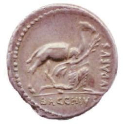 Aulus Plautius coin reverse.jpg